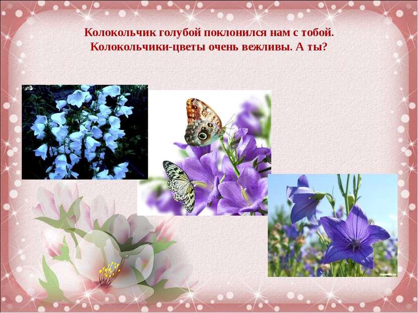 Колокольчик голубой поклонился нам с тобой. Колокольчики-цветы очень вежливы....