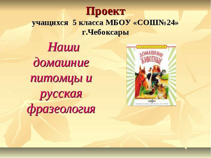 Проект учащихся 5 класса МБОУ «СОШ№24» г.Чебоксары Наши домашние питомцы и ру...