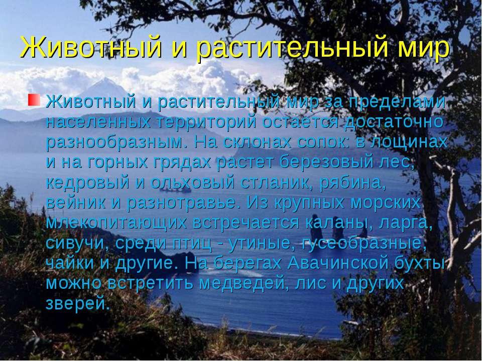 Животный и растительный мир Животный и растительный мир за пределами населенн...