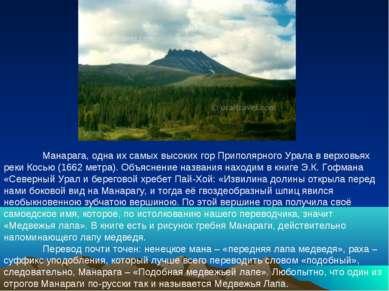 Манарага, одна их самых высоких гор Приполярного Урала в верховьях реки Косью...