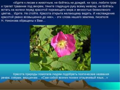 «Идите к лесам и животным, не бойтесь ни дождей, ни гроз, любите гром и тре...