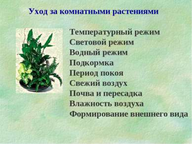 Уход за комнатными растениями Температурный режим Световой режим Водный режим...