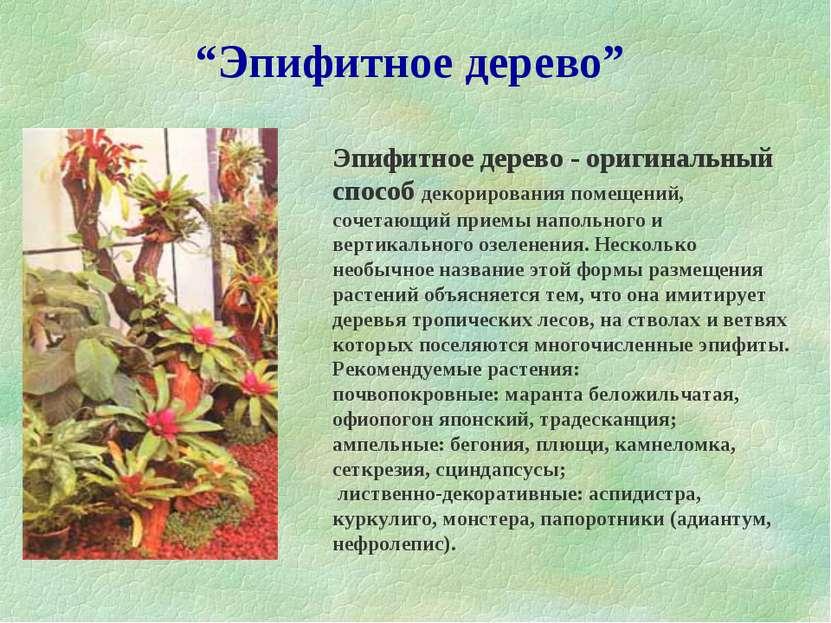 """""""Эпифитное дерево"""" Эпифитное дерево - оригинальный способ декорирования помещ..."""
