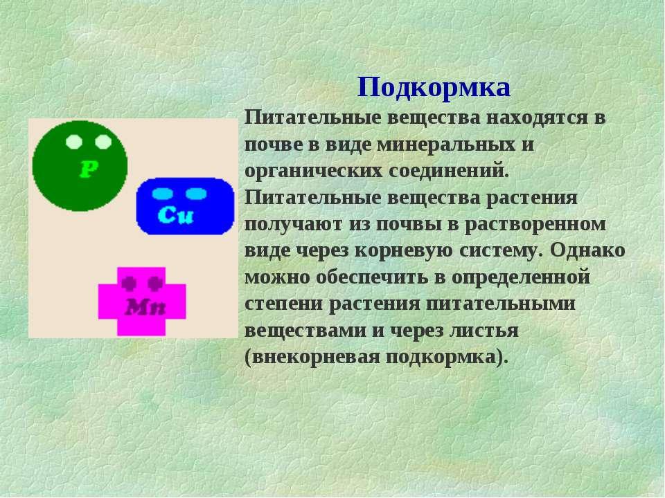 Подкормка Питательные вещества находятся в почве в виде минеральных и органич...