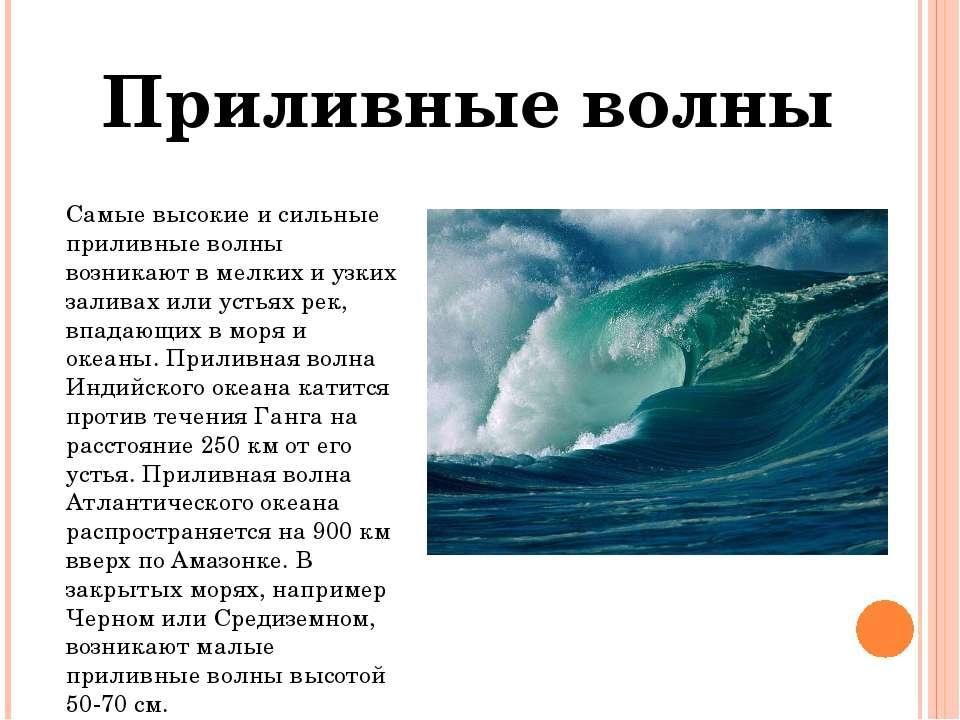 Самые высокие и сильные приливные волны возникают в мелких и узких заливах ил...