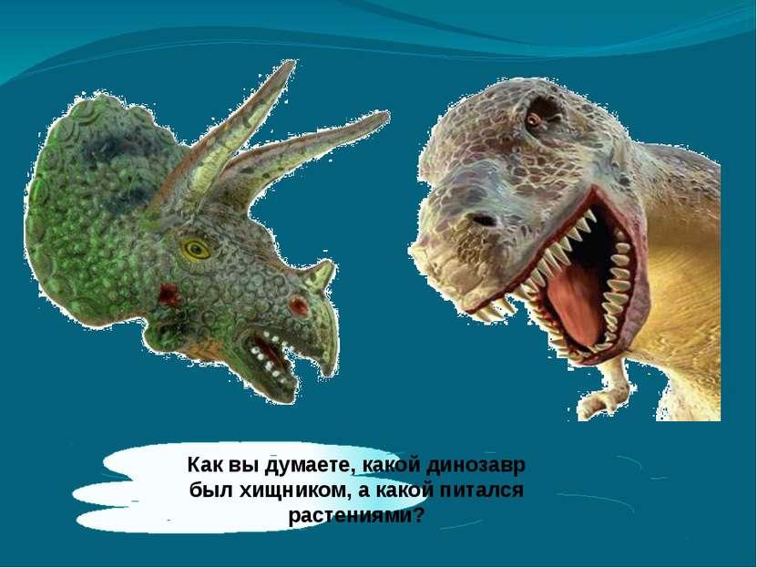 Как вы думаете, какой динозавр был хищником, а какой питался растениями?