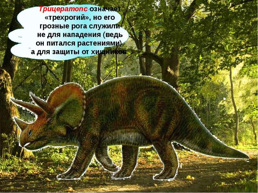 Трицератопс означает «трехрогий», ноего грозные рога служили недля нападени...