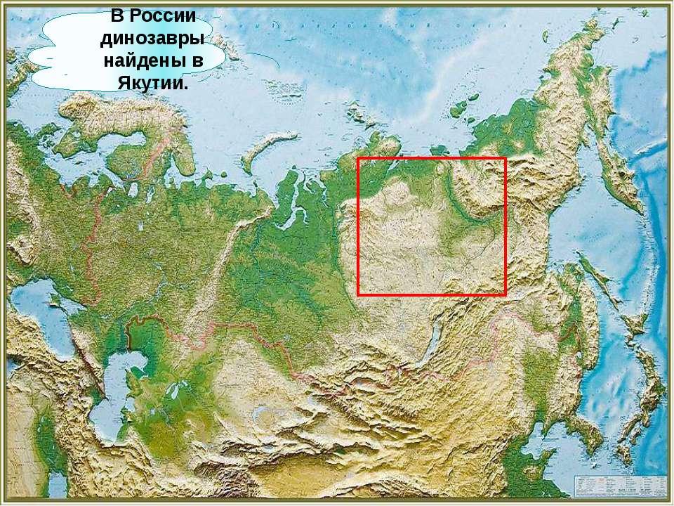 В России динозавры найдены в Якутии.