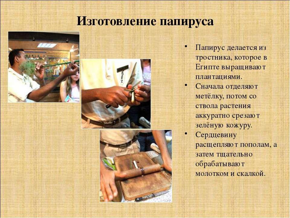 Изготовление папируса Папирус делается из тростника, которое в Египте выращив...