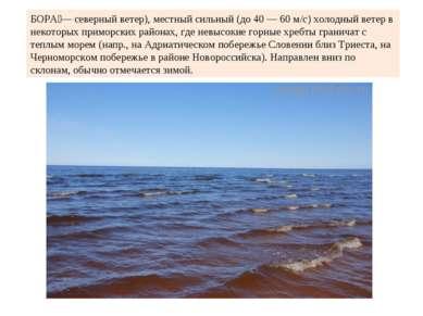 БОРА — северный ветер), местный сильный (до 40 — 60 м/с) холодный ветер в нек...