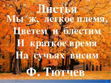 Мы ж, легкое племя, Цветем и блестим И краткое время На сучьях висим Листья Ф...