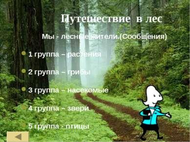 Путешествие в лес Мы - лесные жители.(Сообщения) 1 группа – растения 2 группа...
