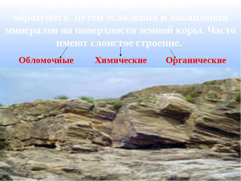 Органические горные породы – образуются путем осаждения и накопления минерало...