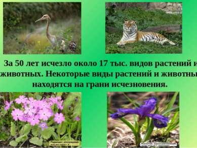 За 50 лет исчезло около 17 тыс. видов растений и животных. Некоторые виды рас...