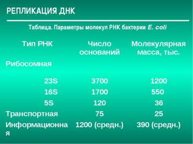 РЕПЛИКАЦИЯ ДНК Таблица. Параметры молекул РНК бактерии Е. соli Тип РНК Число ...