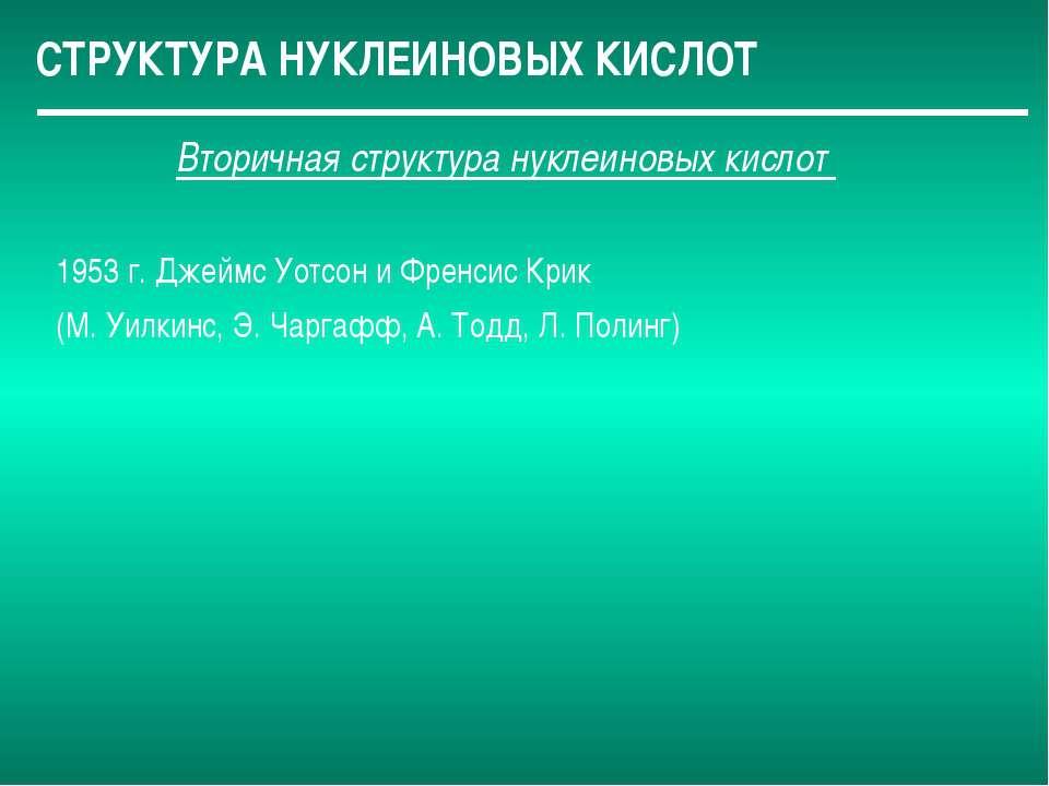СТРУКТУРА НУКЛЕИНОВЫХ КИСЛОТ Вторичная структура нуклеиновых кислот 1953 г. Д...