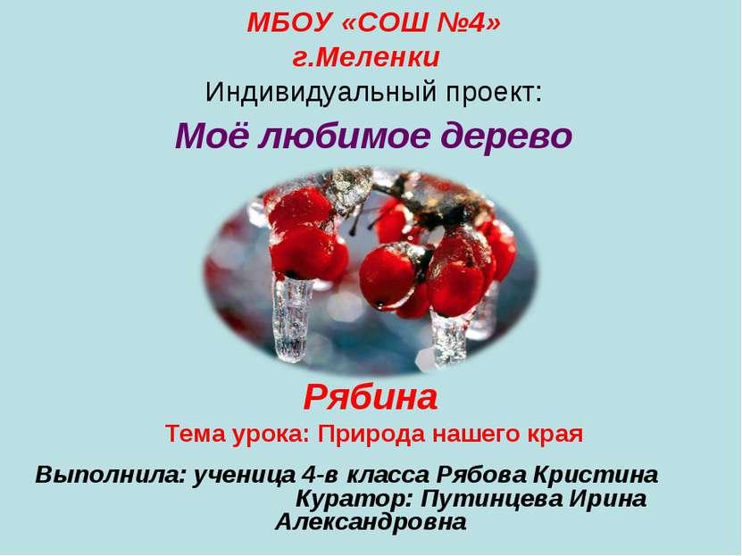 МБОУ «СОШ №4» г.Меленки Индивидуальный проект: Моё любимое дерево Рябина Тема...