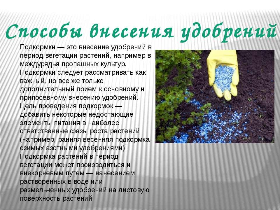 Способы внесения удобрений Подкормки — это внесение удобрений в период вегета...