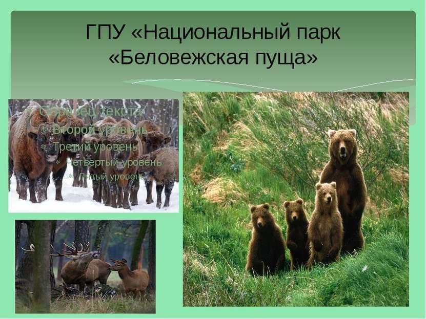 ГПУ «Национальный парк «Беловежская пуща»