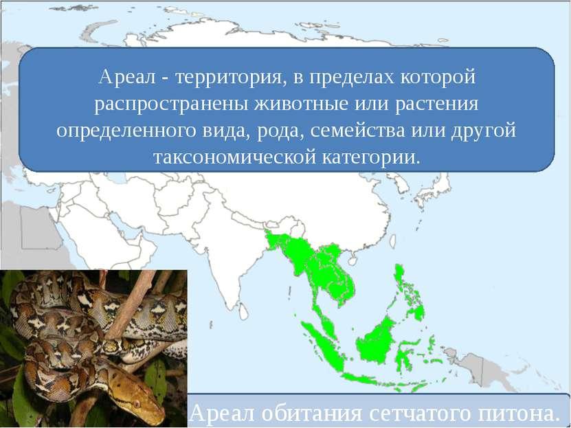 Ареал - территория, в пределах которой распространены животные или растения о...