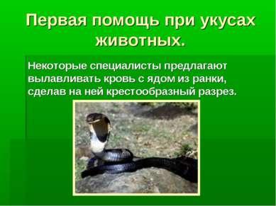 Первая помощь при укусах животных. Некоторые специалисты предлагают вылавлива...