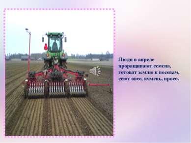 Люди в апреле проращивают семена, готовят землю к посевам, сеют овес, ячмень,...