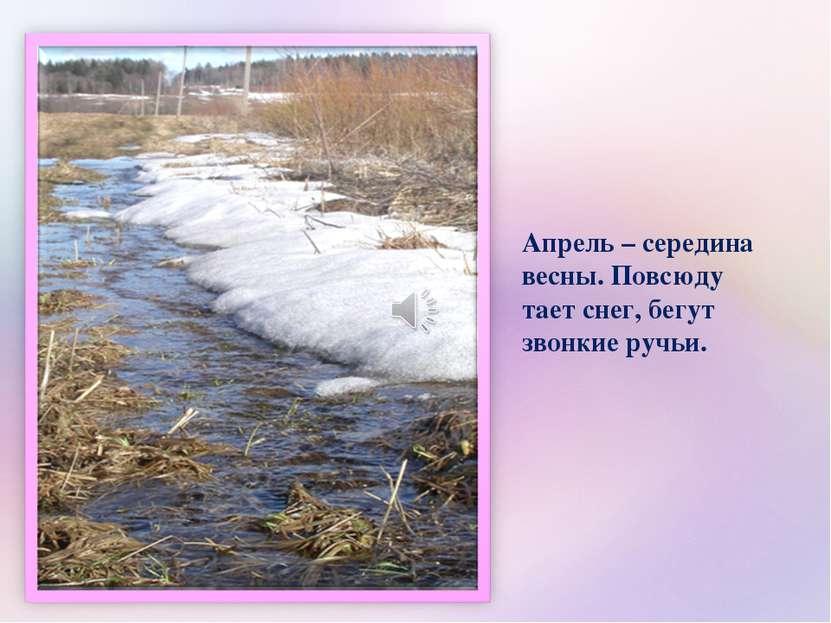Апрель – середина весны. Повсюду тает снег, бегут звонкие ручьи.