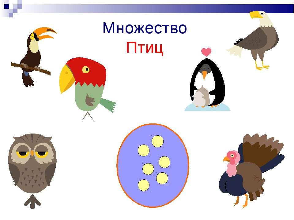 Множество Птиц