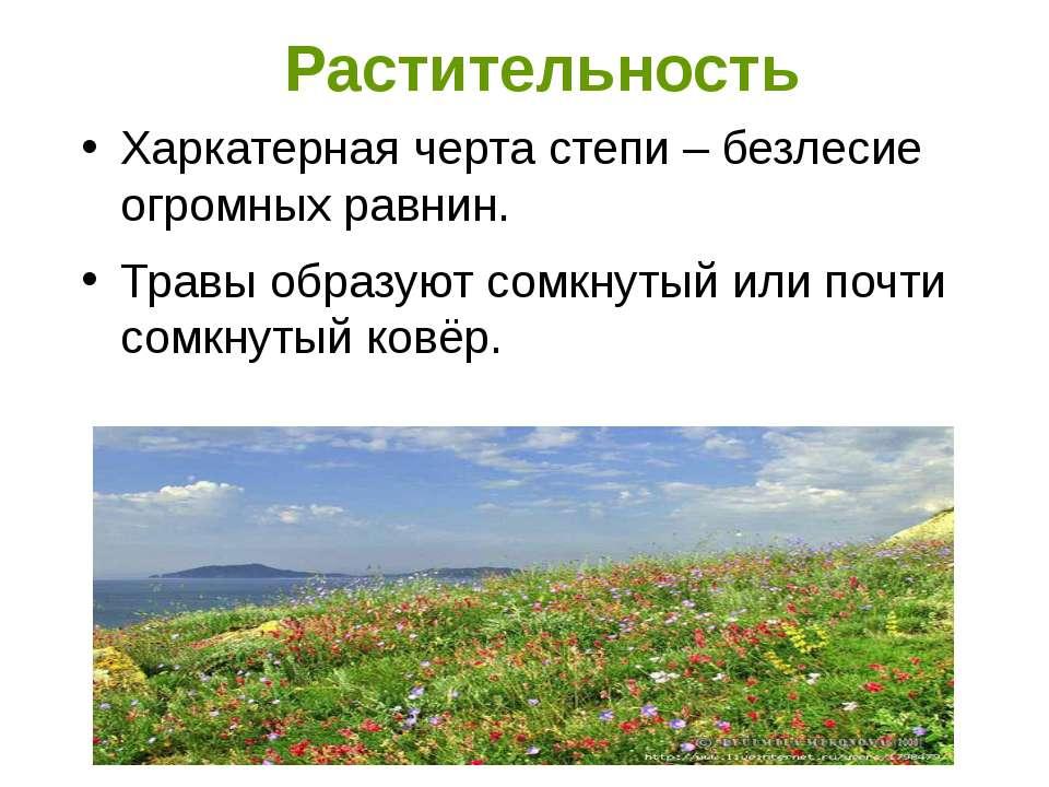 Растительность Харкатерная черта степи – безлесие огромных равнин. Травы обра...
