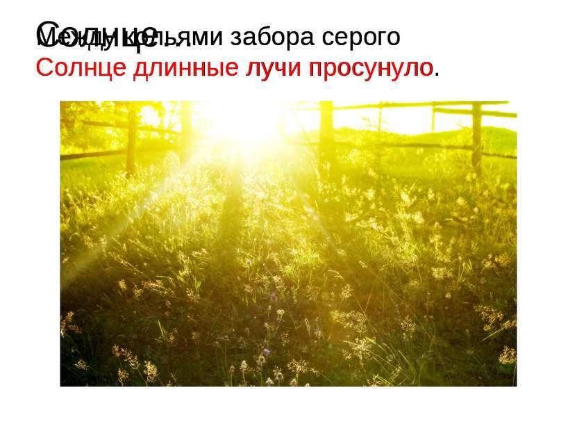Солнце… Между кольями забора серого Солнце длинные лучи просунуло. Между коль...
