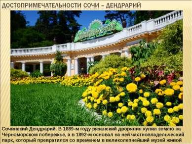 Сочинский Дендрарий. В 1889-м году рязанский дворянин купил землю на Черномор...