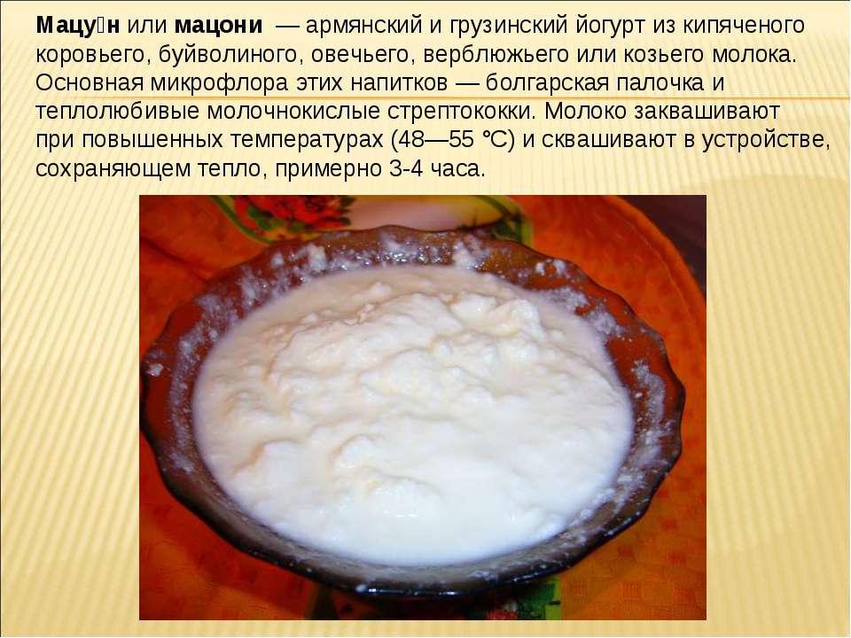 Мацу н или мацони — армянский и грузинский йогурт из кипяченого коровьего, бу...