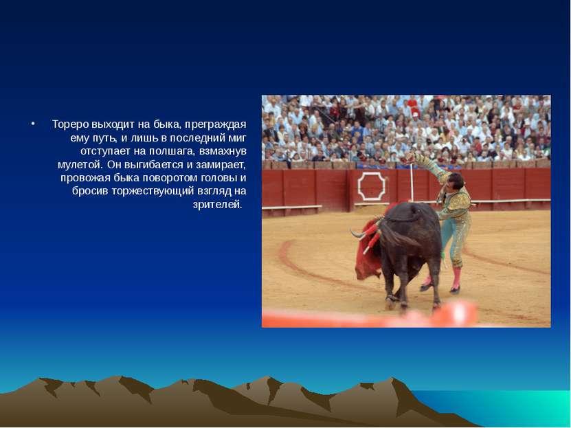 Тореро выходит на быка, преграждая ему путь, и лишь в последний миг отступает...