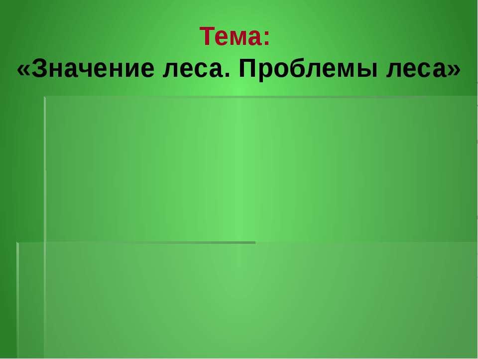 Тема: «Значение леса. Проблемы леса»