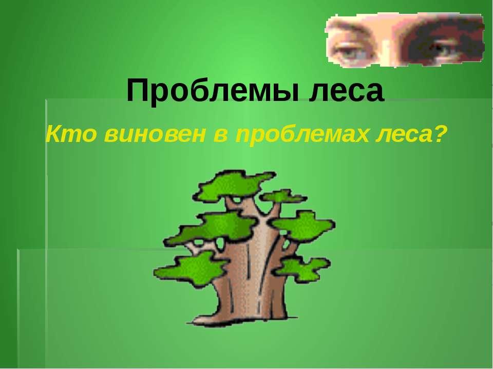 Проблемы леса Кто виновен в проблемах леса?