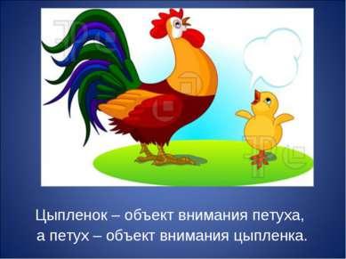 Цыпленок – объект внимания петуха, а петух – объект внимания цыпленка.