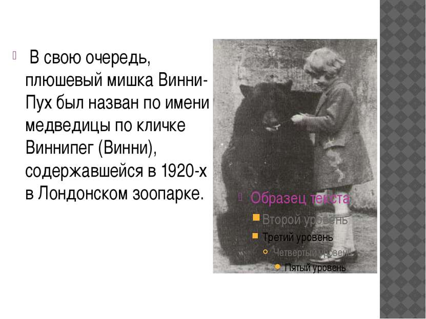 В свою очередь, плюшевый мишка Винни-Пух был назван по имени медведицы по кли...