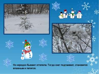 Но нередко бывают оттепели. Тогда снег подтаивает, становится влажным и лепится.
