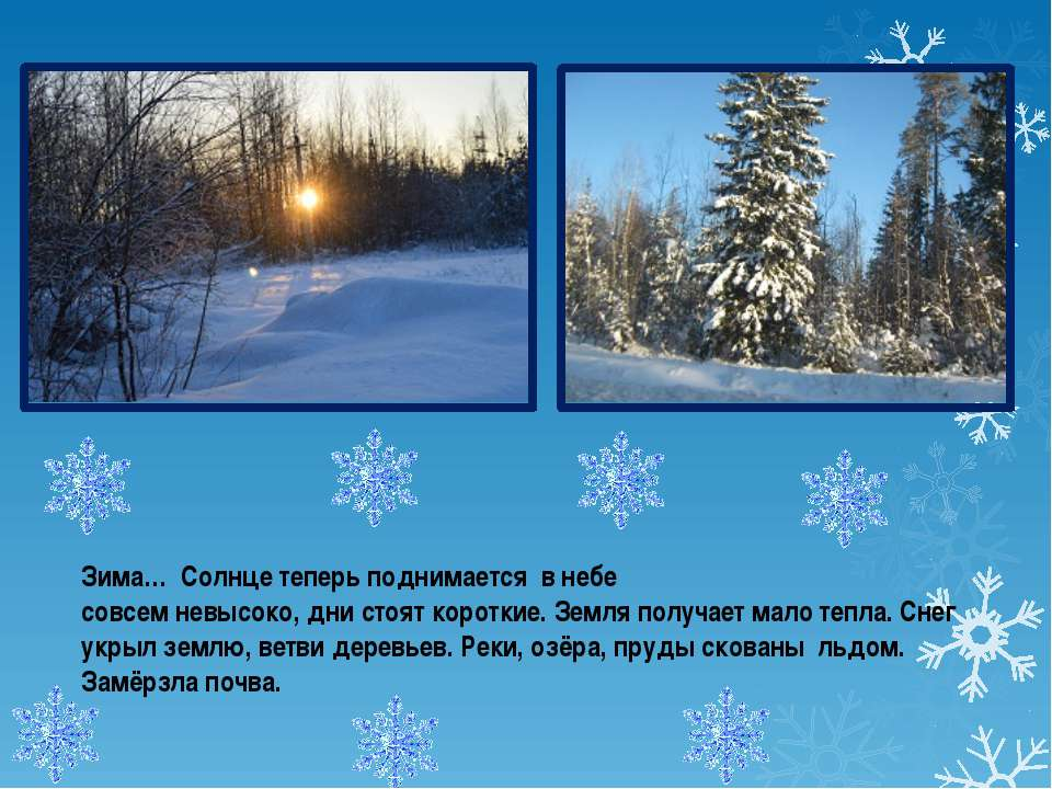 Зима… Солнце теперь поднимается в небе совсем невысоко, дни стоят короткие. З...