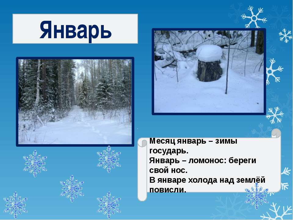 Январь Месяц январь – зимы государь. Январь – ломонос: береги свой нос. В янв...