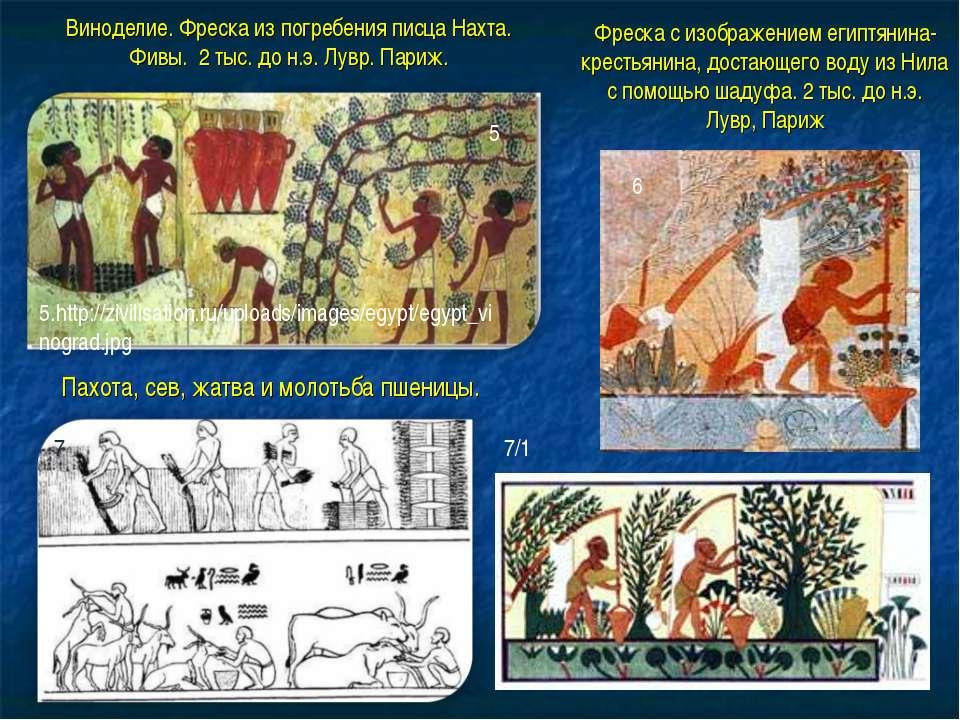 5.http://zivilisation.ru/uploads/images/egypt/egypt_vinograd.jpg Виноделие. Ф...