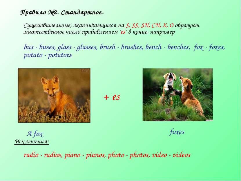 Правило №2. Стандартное. Существительные, оканчивающиеся на S, SS, SH, CH, X,...