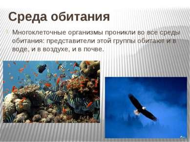 Среда обитания Многоклеточные организмы проникли во все среды обитания: предс...