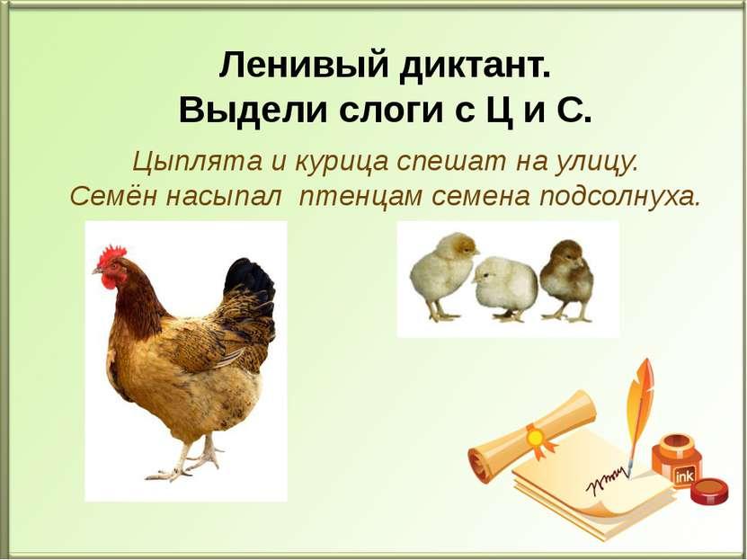 Цыплята и курица спешат на улицу. Семён насыпал птенцам семена подсолнуха. Ле...