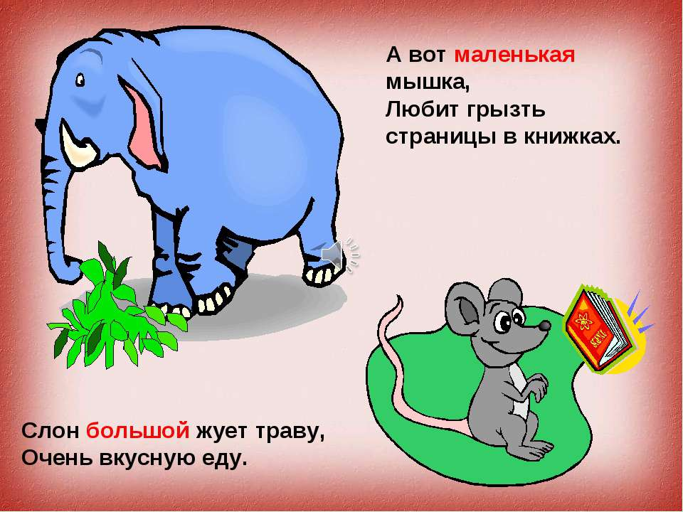 Слон большой жует траву, Очень вкусную еду. А вот маленькая мышка, Любит грыз...