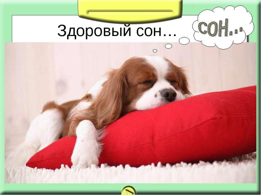 Здоровый сон…