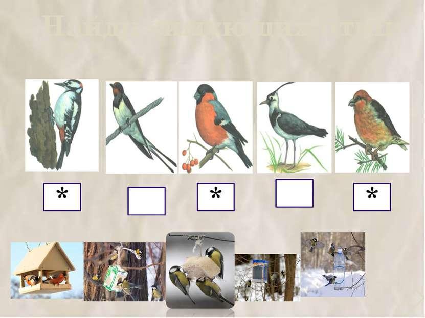 Найди зимующих птиц