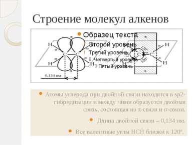 Строение молекул алкенов Атомы углерода при двойной связи находятся в sp2-гиб...
