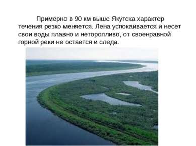 Примерно в 90 км выше Якутска характер течения резко меняется. Лена успокаива...