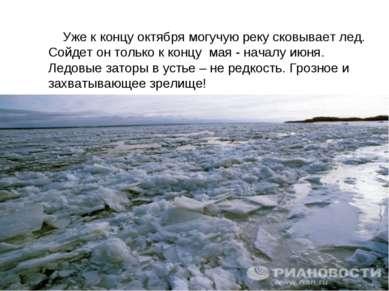 Уже к концу октября могучую реку сковывает лед. Сойдет он только к концу мая ...